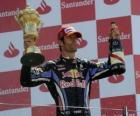 Mark Webber ha celebrato la sua vittoria a Silverstone, Gran Premio di Gran Bretagna (2010)