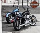 Due Harley davidson