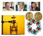 Premio Nobel per la Chimica 2010 - Richard Heck, Eiichi Negishi e Akira Suzuki -