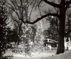Natale nel Parco