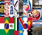 FIFA Club Cup Emirati Arabi Uniti del Mondo 2010