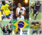 Marta Vieira da Silva, giocatore della Coppa del Mondo Anno 2010