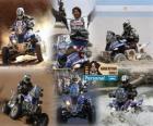 Alejandro Patronelli Dakar 2011