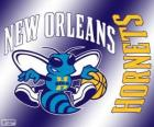 Logo New Orleans Hornets, squadra NBA. Southwest Division, Western Conference