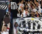 Copa Libertadores 2011 campione del Santos FC