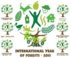 2011 Anno Internazionale delle Foreste