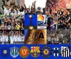 FIFA Club World Cup Japan 2011