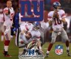 New York Giants campione NFC 2011