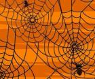 Ragni di Halloween