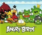 Uccelli, uova e maiali verdi in Angry Birds