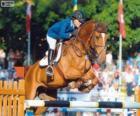 Salto ostacoli. Il cavaliere e il cavallo in un salto