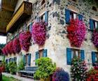 Casa in primavera con i fiori alle finestre
