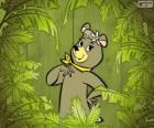 La bella Cindy orso è la fidanzata di Orso Yoghi