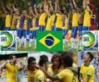 Brasile FIFA Confederations Cup 2013