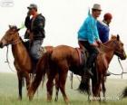 Xilingol cavallo originaria della Mongolia