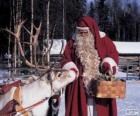 Babbo Natale dando nutrono le renne