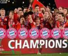 Bayern Monaco, Campione Copa del Mondo per club 2013