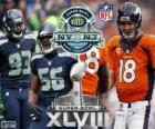 Super Bowl 2014. Seattle Seahawks vs Denver Broncos. MetLife Stadium, nel New Jersey, 2 febbraio 2014