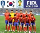 Selezione della Corea del Sud, gruppo H, Brasile 2014