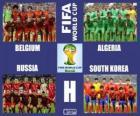Gruppo H, Brasile 2014