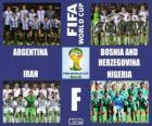 Gruppo F, Brasile 2014