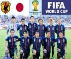 Selezione del Giappone, Gruppo C, Brasile 2014