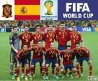 Selezione di Spagna, Gruppo B, Brasile 2014