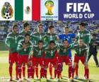 Selezione di Messico, Gruppo A,  Brasile 2014