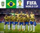 Selezione di Brasile, Gruppo A, Brasile 2014