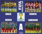Gruppo A, Brasile 2014