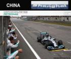 Lewis Hamilton campione del Gran Premio della Cina 2014
