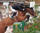 Cavallo e cavaliere superando un ostacolo a un concorso di salto