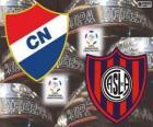 Club Nacional del Paraguay vs San Lorenzo de Almagro dell'Argentina. Finale di Copa Libertadores 2014