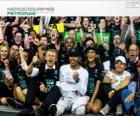 Lewis Hamilton, campione del mondo di F1 2014 con Mercedes