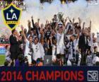 Los Angeles Galaxy, campione MLS 2014