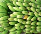 Banane verdi e gialle