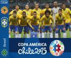 Brasile Coppa America 2015