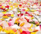 Petali di rosa, matrimonio