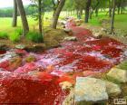Paesaggio con un fiume rosso