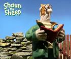 Il contadino di Shaun