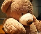 Grande orso di orsacchiotto