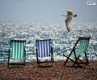 Tre sedie di spiaggia e un gabbiano che vola vicino alla riva del mare