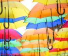 Ombrello di colori