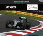 Nico Rosberg, GP Messico 2016