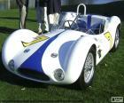 Maserati Tipo 61 (1960)