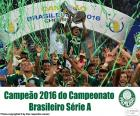 Palmeiras, campione del Brasile 2016