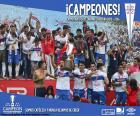 Club Deportivo Universidad Católica, campione del torneo Apertura 2016, il primo campionato di calcio cileno