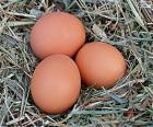 Tre uova