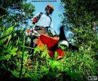 Giardiniere con un decespugliatore