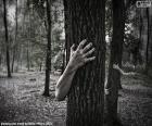 La foresta di orrore